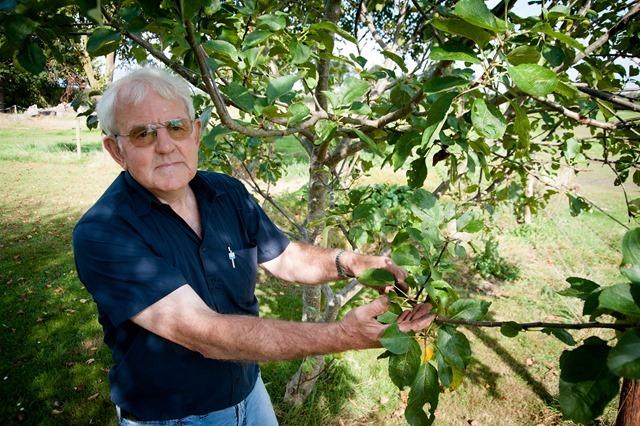 Lieveren Fruitroof