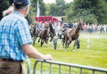 paaredensport
