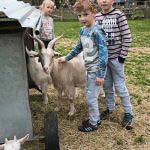 Roden opening kinderboerderij seizoen-2
